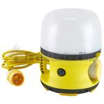 110V 30W LED Emergency Globe Light