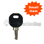 Advanced MX Panel Door Key